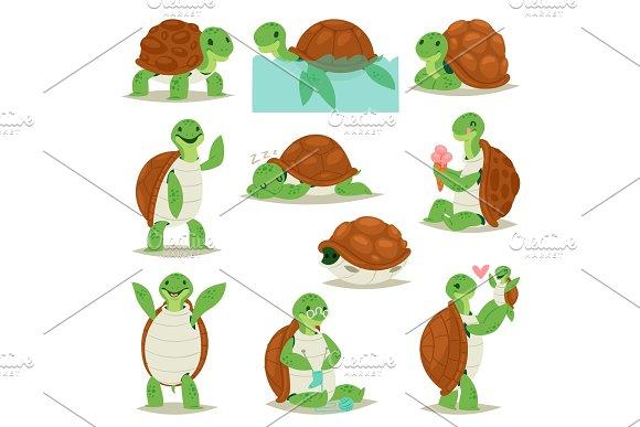 Turtle vector cartoon seaturtle