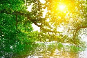 Bright sunrise on shore of picturesq