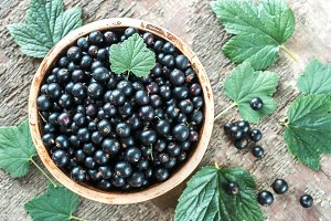 Bowl of blackcurrant