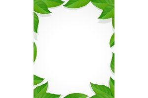 Leaves frame. Green decoration