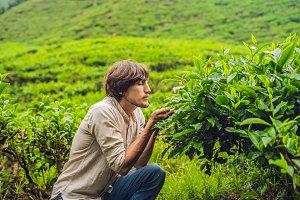 Men tourist at a tea plantation