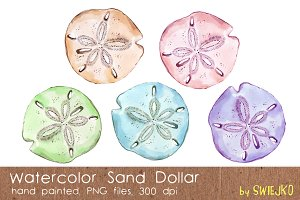 Watercolor Sand Dollar