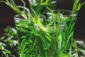 Green fizzy drink with tarragon, vin