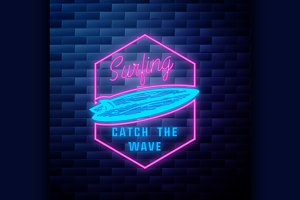 Vintage surfing emblem