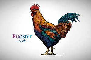 Rooster in graphic style