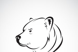 Vector of bear head design.