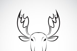 Vector of moose deer head design.