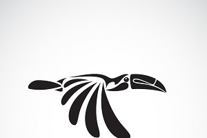 Vector of hornbill design. Bird.