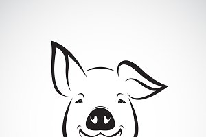 Vector of pig head design. Animal.