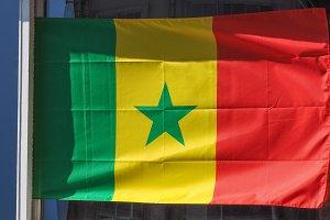 Senegalese Flag of Senegal