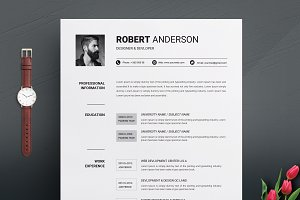 2 Pages Clean Resume Template