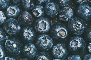 Fresh blueberry background. Texture