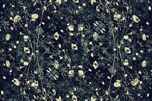 Dark Floral Collage Background