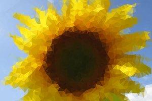 Triangulated Sunflower