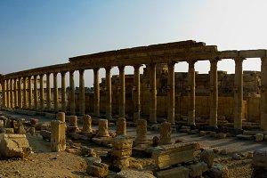 Panorama of Palmyra columns and anci
