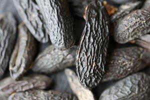 Spices: tonka bean