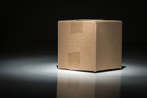 Blank Carboard Shipping Box Under Sp