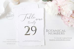 Olive Wedding Botanical Numbers