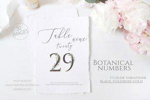 Olive Wedding Botanical Numbers