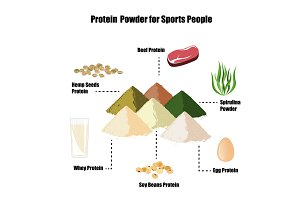 Protein powder infographic set