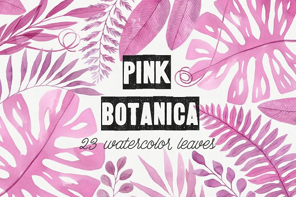 Pink Botanica. Watercolor clipart
