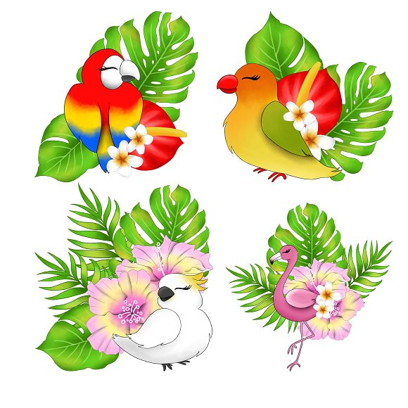 Birds tropical. Clipart