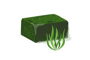 Frozen spirulina block vector