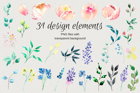 Watercolor clip arts floral set in Illustrations - product preview 4