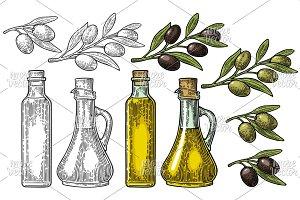 Olive Set  botle oil, branch, leaves