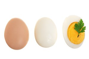 boiled egg and half isolated on