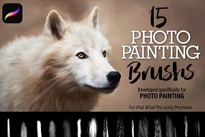 15 Photo Painting Brushes