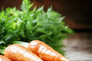 Fresh spring carrot on a vintage woo