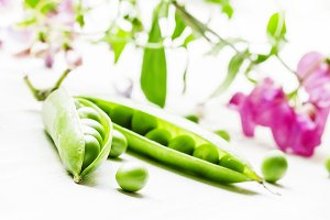 Green peas in pods on a white backgr