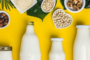 dairy free milk substitute drinks an