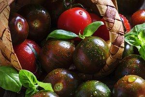 Black cherry tomatoes, selective foc