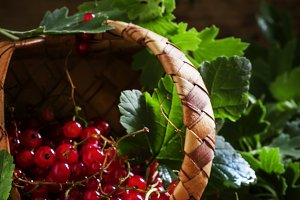 Red currant, dark vintage wooden bac
