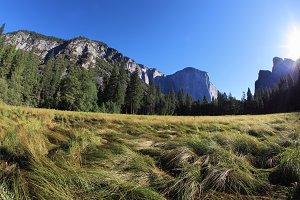 Thel glade in Yosemite park on sunri