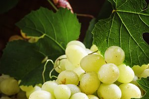 Green grapes with vine and leaves, v