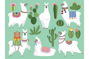 Set illustrations of animals. Llama
