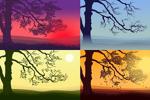 Beautiful Colorful Trees Set
