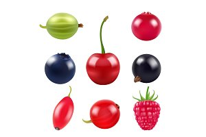 Realistic pictures of berries