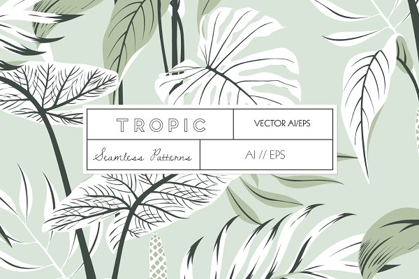 Patterns: TSTUDIO - TROPIC, An elegant Vector Pattern!