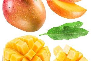 Set of mango fruits, mango slices an