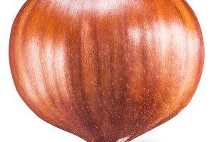 Macro picture of ripe brown hazelnut