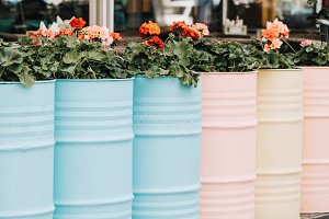Old containers reuse as flowerbeds