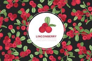 Arctic lingonberry