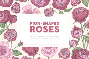 Botanical peony-shaped roses