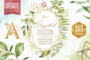 Crystal. Floral & Polygonal Bundle