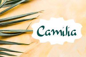 Camilia - Handwritten Script Font