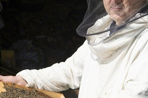 Beekeeper with honeycombs in hands